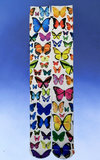 Knee-High Butterfly Socks